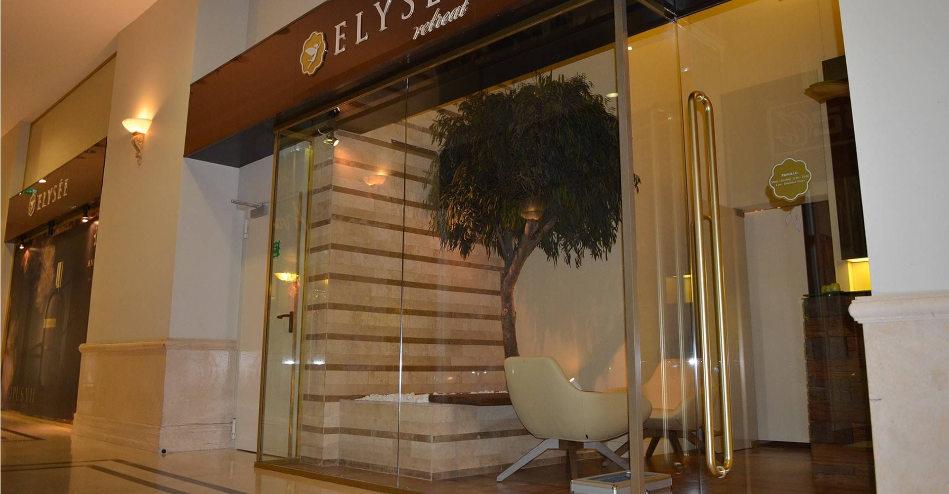 proiect-elysee-01