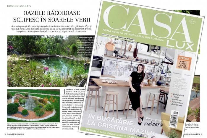 poza aparitie in revista Casa Lux